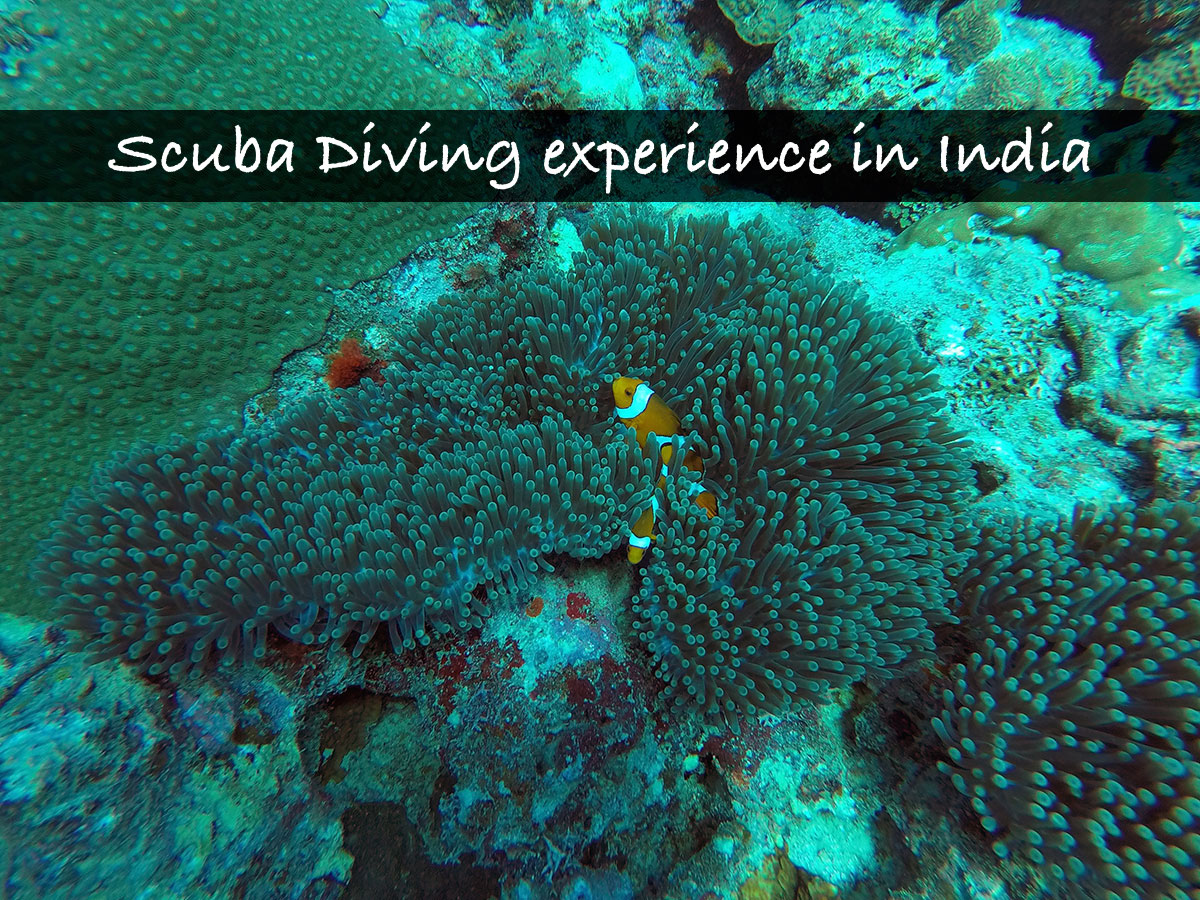 Scuba Diving experience in India – Havelock, Andamans